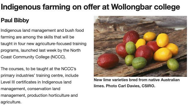 Indigenous farming on offer at Wollongbar college